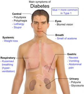 Κυριότερα συμπτώματα του Σακχαρώδους Διαβήτη